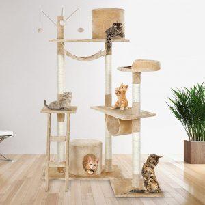grand arbre à chat à plusieurs plateformes